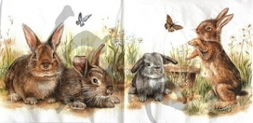 Serviette bunny and clyde