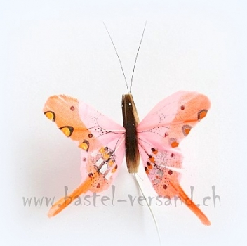Federschmetterling 6,5cm orange