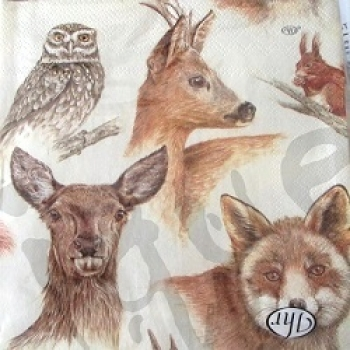 Serviette forest animals